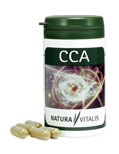 CCA - przeciwutleniacze