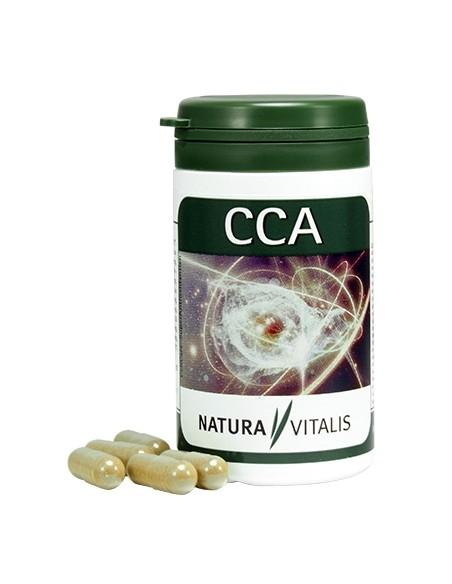 CCA - przeciwutleniacze (antyoksydanty)